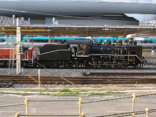 P5030067-1
