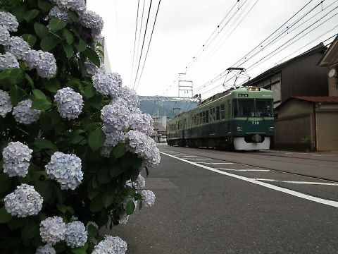 T_t_img_0703
