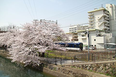 T_img_9891
